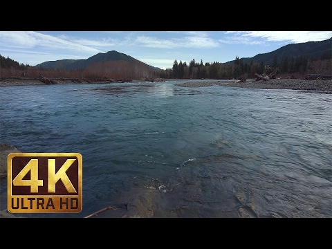 4K River Flowing Relax Video - Sounds of Water | Hoh River, Olympic National Park, USA - 1.5 HRS