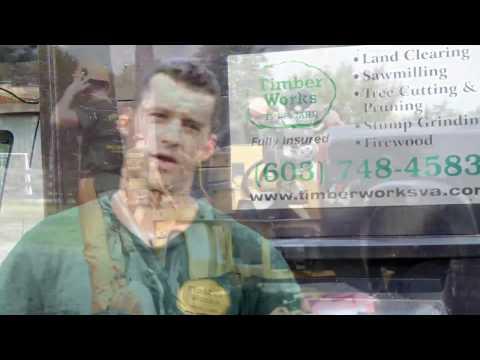 VA Tree Service | VA Tree Removal | Timber Works Tree Care