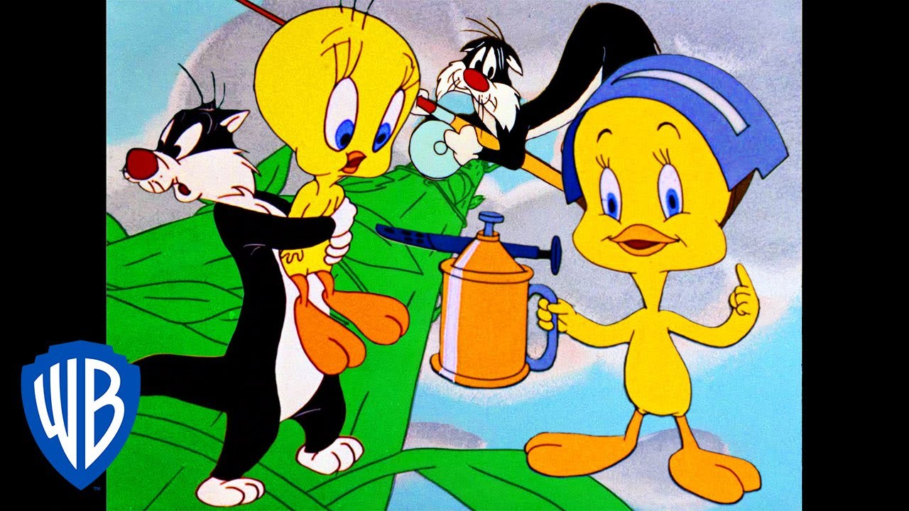 Looney Tunes | Best of Tweety Bird and Sylvester | Classic Cartoon Compilation | WB Kids