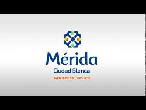 Merida - Animated Logo - Shape Digital Media