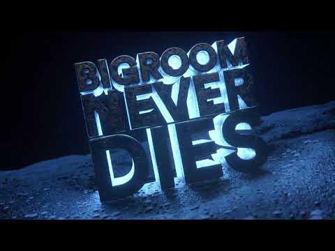 Hardwell & Blasterjaxx feat. Mitch Crown - Bigroom Never Dies (Visual Video)
