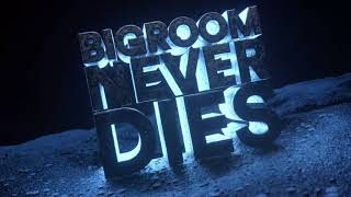 Hardwell & Blasterjaxx feat. Mitch Crown - Bigroom Never Dies (Visual Video) thumbnail