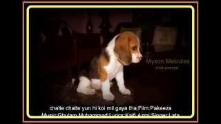chalte chalte yun hi koi mil gaya tha-instrumental;Film:Pakeeza