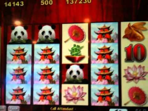 Wild Panda Slot Machine Jackpot