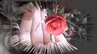 Bông Hoa Vườn Dị Thảo-Hoàng Song Liêm- Anh Bằng