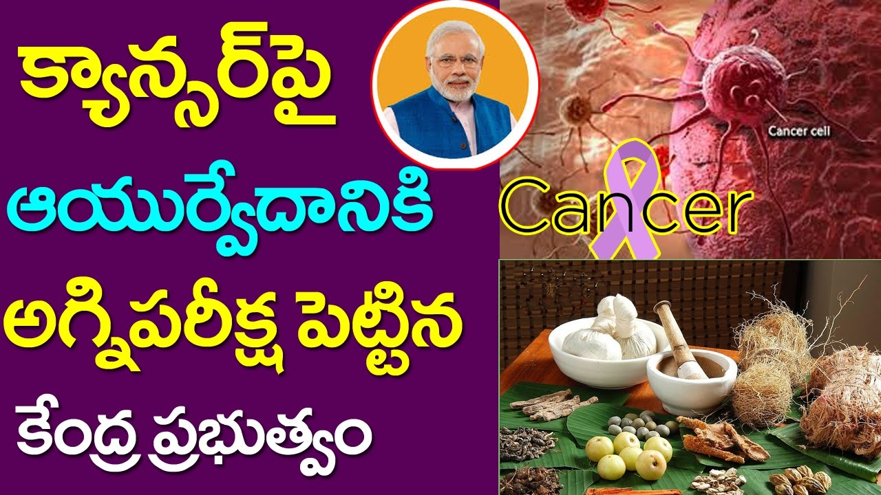 Ayurveda Medicine For Cancer Testing BY AIIMS | Do Ayurvedic Drugs Help  Treat Cancer | Taja30