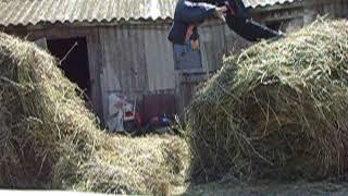 Развлечения школьника в деревне 2005 год