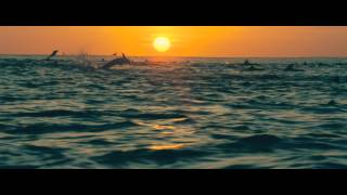 DisneyNature: Oceans - Trailer
