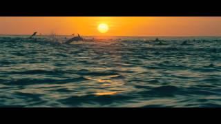 DisneyNature: Oceans - Trailer