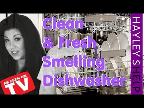 HOW TO GET RID OF A SMELLY DISHWASHER.  DISHWASHER SMELLS CLEANING HACKS