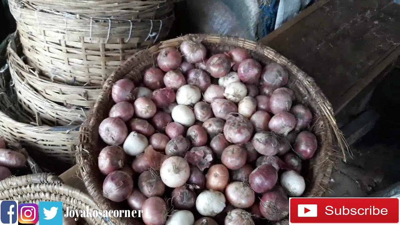 Download 50 Onions for N300    Join Me to Ilepo Market in Lagos