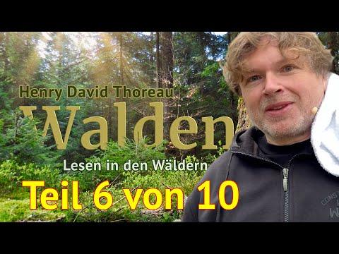 Henry David Thoreau: Walden – Teil 6 von 10 – Das Lesen in den Wäldern