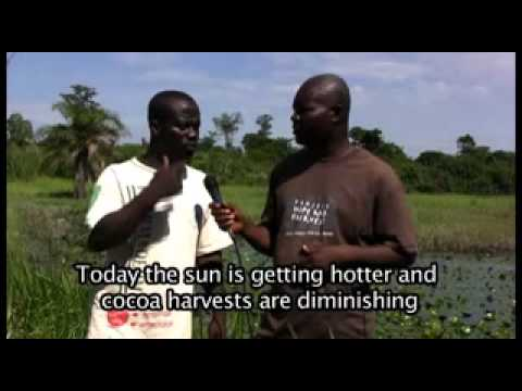 Cocoa producers in Côte d'Ivoire -- Created by the producers themselves