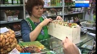 В магазинах семян в Иркутске — начало весеннего ажиотажа,