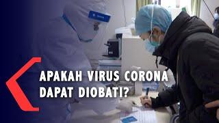 Wuhan, kompas.tv - virus corona kini tengah menjadi perhatian dunia. wabah disebut berasal dari wilayah china. ini pertama kali diu...