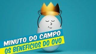 MINUTO DO CAMPO - OS BENEFÍCIOS DO OVO