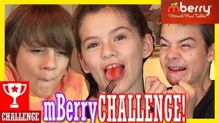 the mberry challenge   kittiesmama