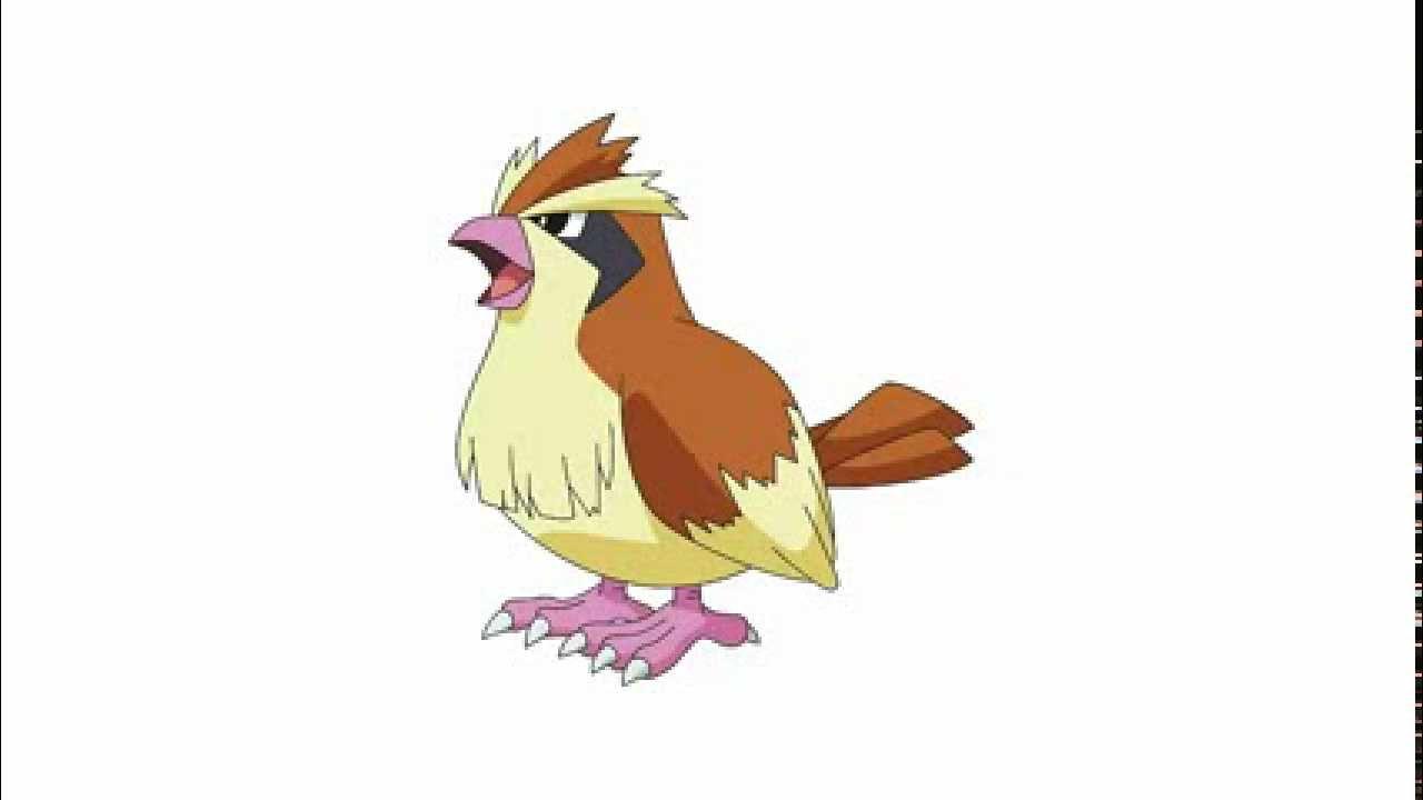Pokemon Cries - Pidgey | Pidgeotto | Pidgeot - YouTube