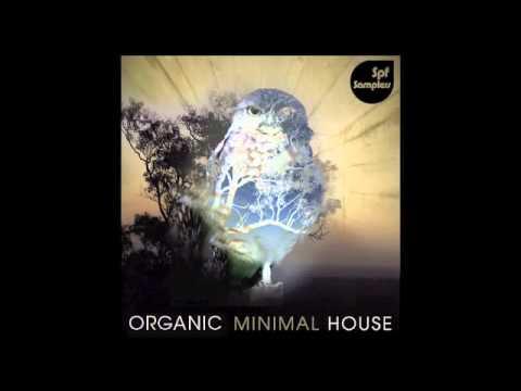 spf samplers_organic minimal house.m4v