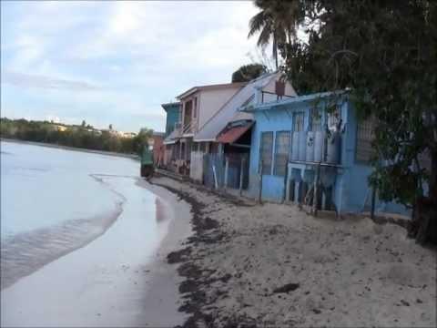 Puerto Rico's Western Coastal Valley & Rincón