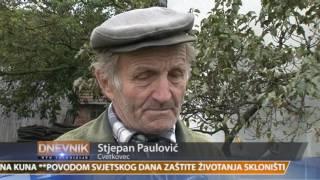 VTV Dnevnik 11. listopada 2016.