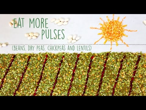 Pulses and Weight Management
