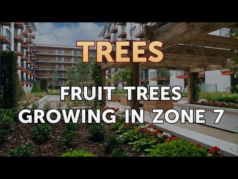 Fruit Trees Growing in Zone 7