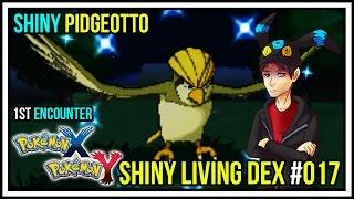 1st encounter shiny pokemon shiny pidgeotto   shiny living dex 017   pokemon x and y