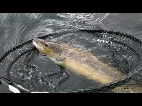 """Fly fishing Killarney """" Just another day in Paradise """"."""