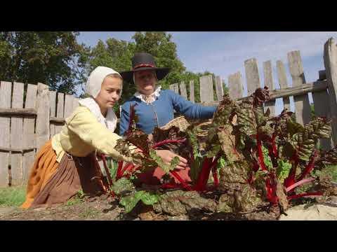 Pilgrim Life with Scholastic News