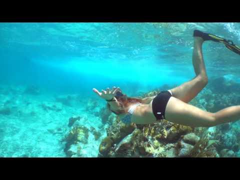 The Best Snorkeling in St Maarten at Creole Rock - Aqua Mania Adventures