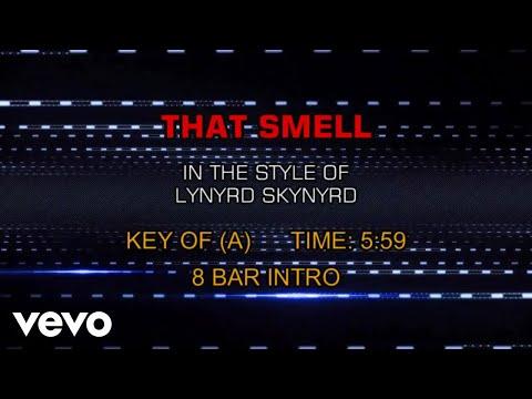 Lynyrd Skynyrd - That Smell (Karaoke)