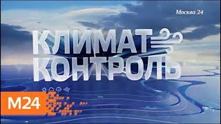 """""""Климат-контроль"""": какая погода ожидает москвичей на этой неделе - Москва 24"""