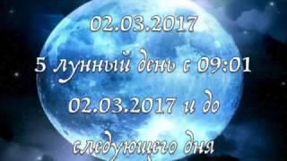 ЛУННЫЕ СУТКИ 2 МАРТА/ПРОГНОЗ НА ДЕНЬ/ШКОЛА ТАРО GOLDEN CHARM