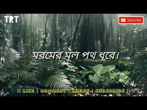 👉Amar Bhitor O Bahire😍 Rabindra Sangeet WhatsApp Status😍👈......