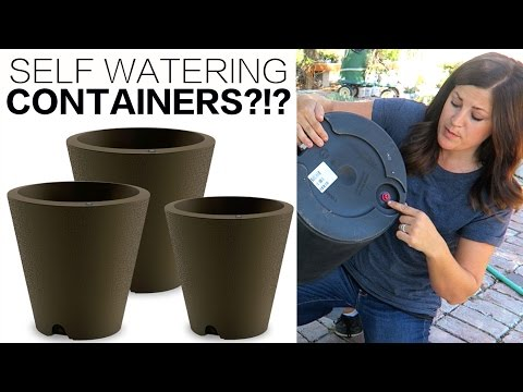 SELF WATERING CONTAINERS!?! - YouTube