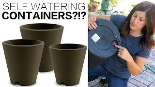 SELF WATERING CONTAINERS!?!