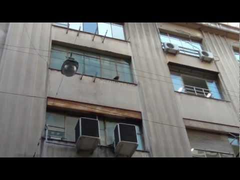 Un carancho en la calle Florida en Buenos Aires
