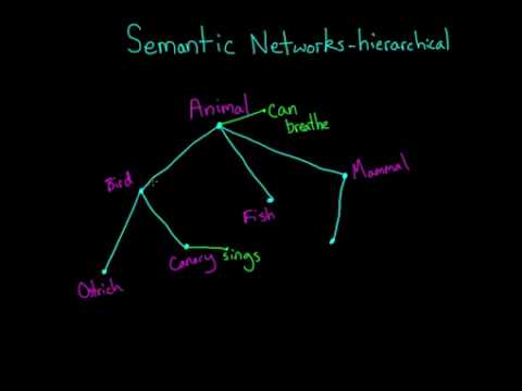 03   Cognition   04   Semantic networks and spreading activation
