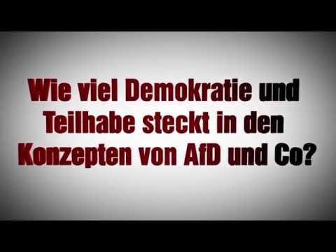 Demokratie für Alle: Wie viel Demokratie und Teilhabe steckt in den Konzepten von AfD und Co?