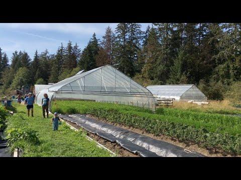 Farragut Farm: Growing Vegetables In Southeast Alaska