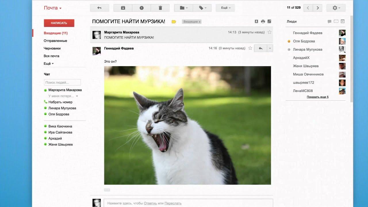 Реклама гугл хром про котенка как подать жалобу в яндекс директ
