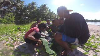 Navacopah goes boodlefight