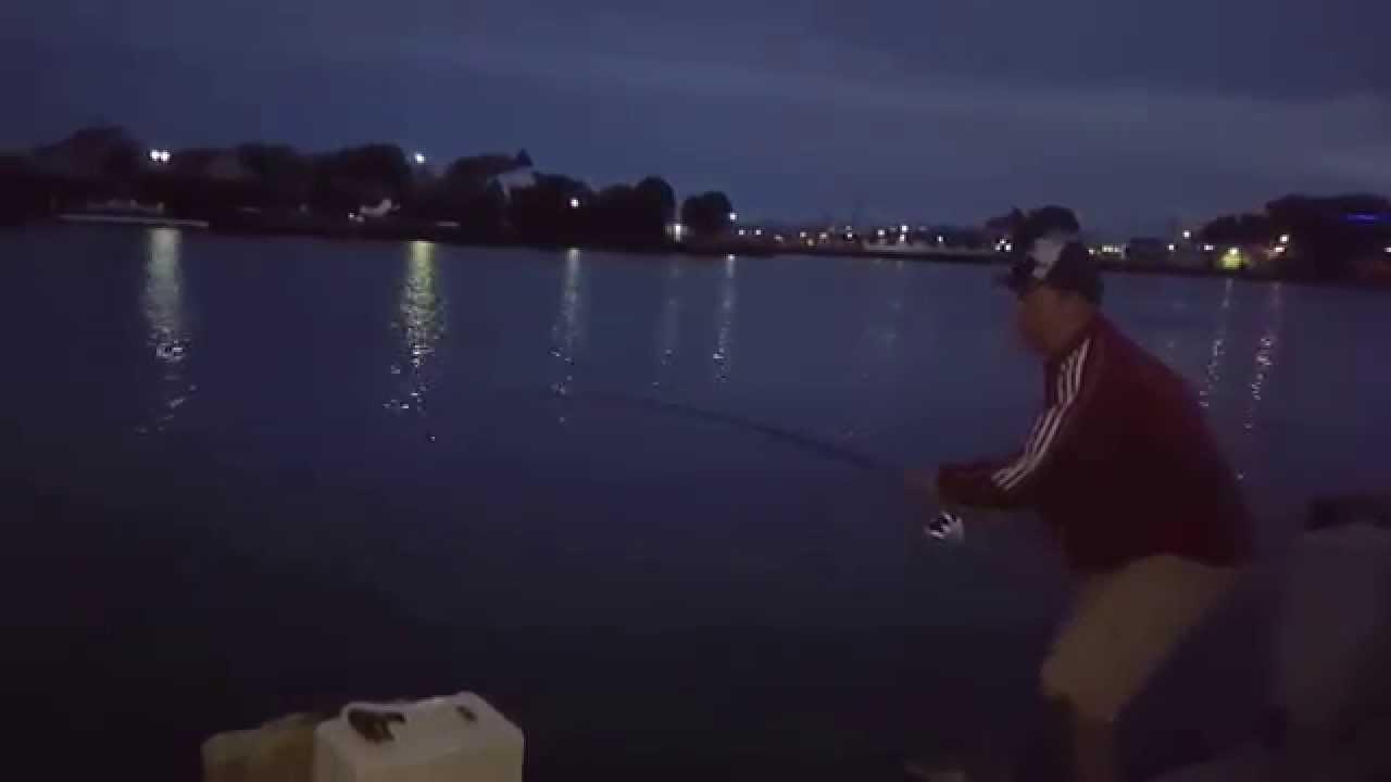 Salmon fishing in kewaunee harbor 2015 big king for Kewaunee fishing report