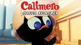 Calimero's Coolste Avonturen - Nederlands gesproken
