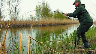 СКОЛЬКО ЖЕ ТУТ РЫБЫ!!! БЕШЕНЫЕ ПОКЛЕВКИ НА КАЖДОМ ЗАБРОСЕ! Рыбалка на донку.
