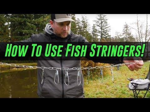 How To Use FISH STRINGERS. (CHEAP & EASY!)