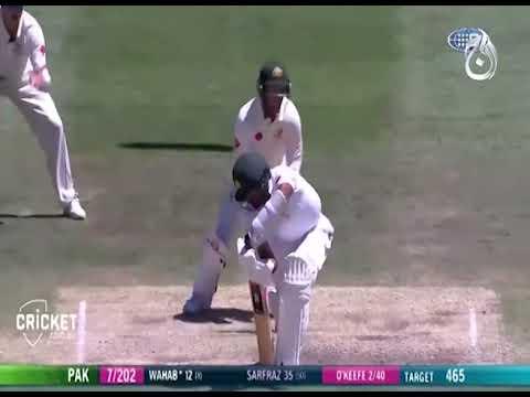 Australia beat Pakistan by 220 runs to sweep series