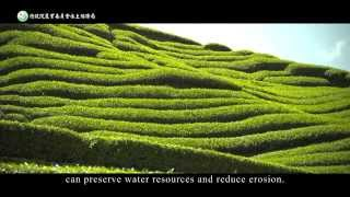 Soil and Water Conservation measures on slope farmland