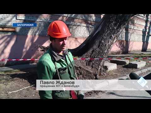 Телеканал TV5: Як Запоріжжя